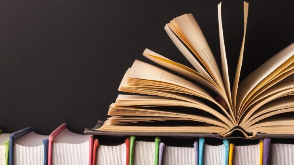 Micros Literarios: una propuesta virtual para los amantes de la lectura - Radio Cantilo