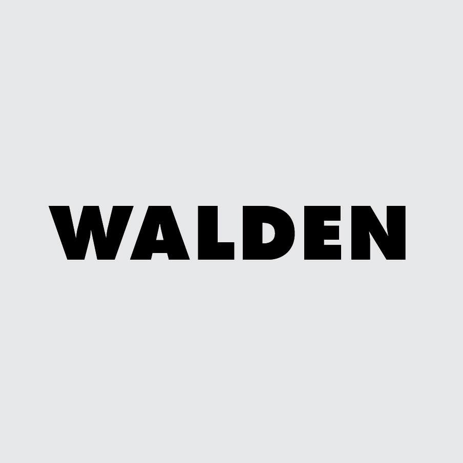 Walden: rock y cultura lateral en un mismo lugar - Radio Cantilo