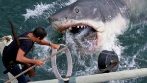 """Exclusivo: mano a mano con el guionista de """"Tiburón"""""""